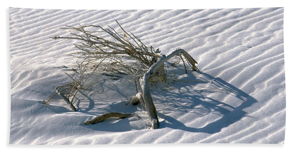 White Sands Hand Towel featuring the photograph Struggle To Survive by Sandra Bronstein