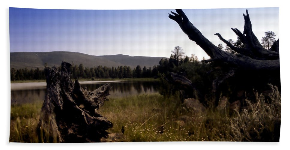 Nature Bath Towel featuring the photograph Stumped By The Lake by John K Sampson