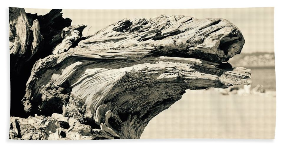 Driftwood Hand Towel featuring the photograph Suddenly A Lone Beach Camel Appeared by David Coleman