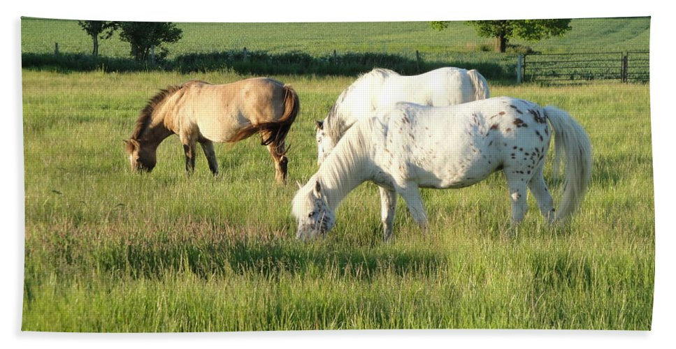 Pony Bath Sheet featuring the photograph Summer Grazing by Susan Baker