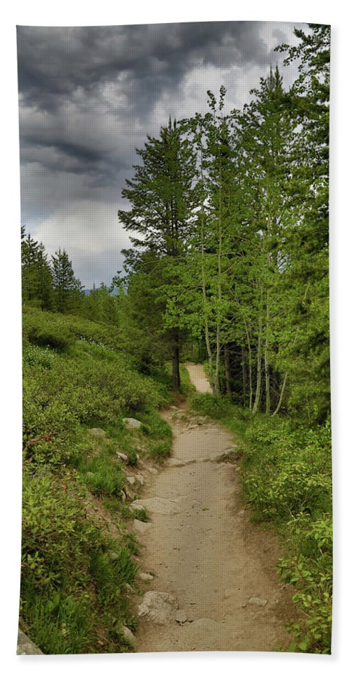 Summer Hike And Storm Clouds Bath Sheet featuring the photograph Summer Hike And Storm Clouds by Dan Sproul
