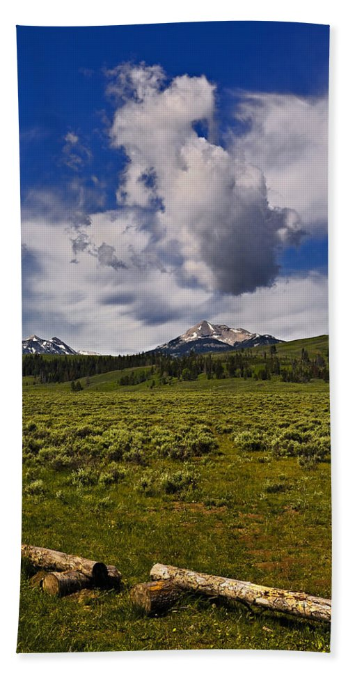 Nature Bath Towel featuring the photograph Summer by John K Sampson