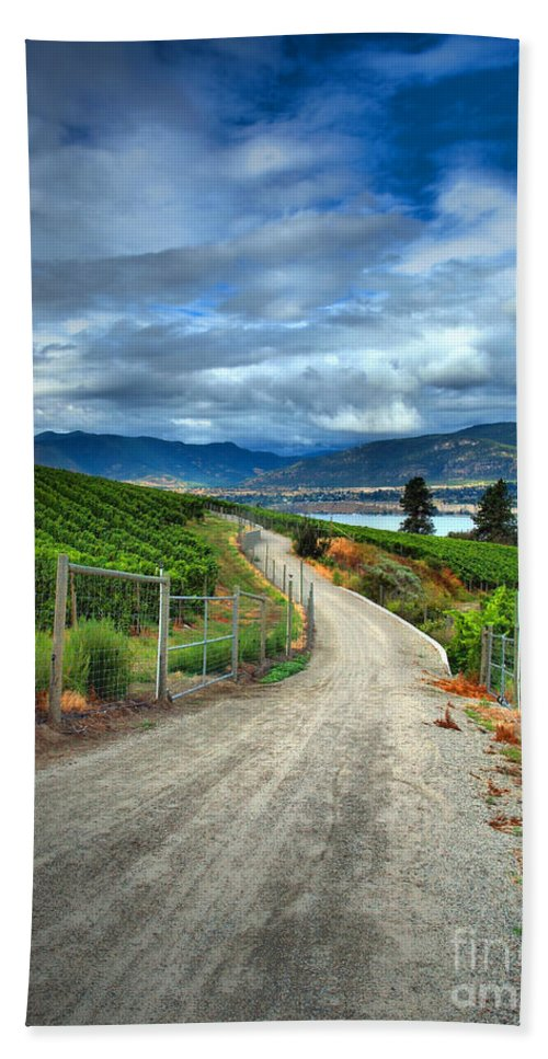 Road Bath Sheet featuring the photograph Summer Passages by Tara Turner