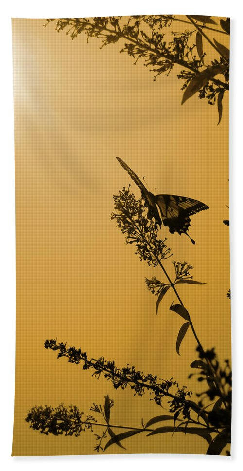 2010 Hand Towel featuring the photograph Summer Silhouette by Julia Raddatz