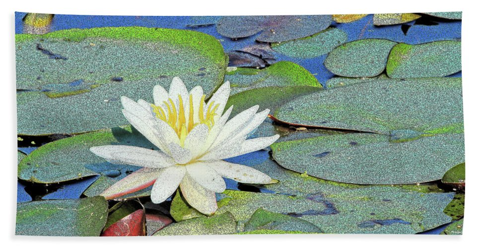 Water Lily Bath Sheet featuring the photograph Summer Water Lily by Karol Livote