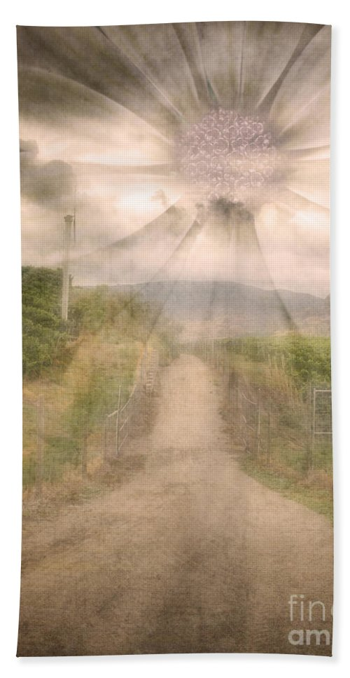 Flower Hand Towel featuring the photograph Summer's Last Light by Tara Turner