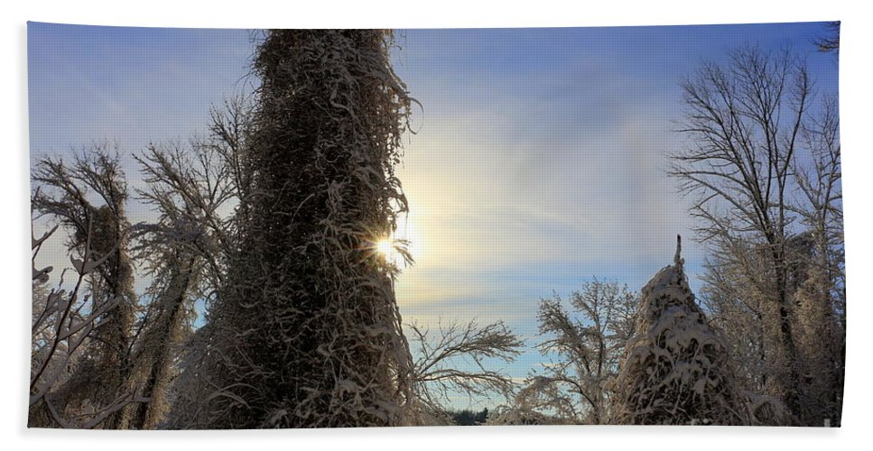 Winter Hand Towel featuring the photograph Sun And Snow by Neal Eslinger