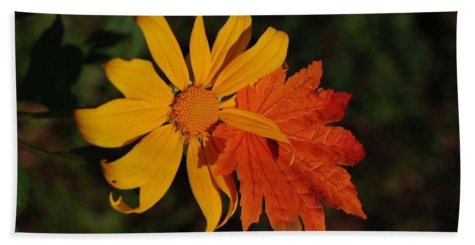 Pop Art Hand Towel featuring the photograph Sun Flower And Leaf by Rob Hans