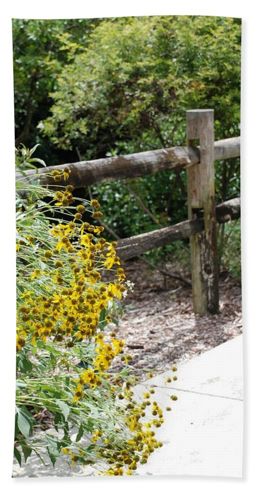 Macro Hand Towel featuring the photograph Sun Flower Fence by Rob Hans