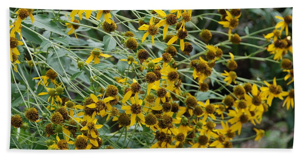 Macro Hand Towel featuring the photograph Sun Flowers by Rob Hans