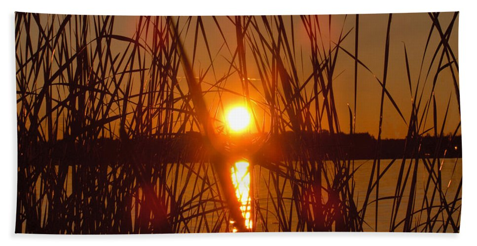 Reeds Lake Water Sunset Sunshine Nature Bath Sheet featuring the photograph Sun In Reeds by Andrea Lawrence
