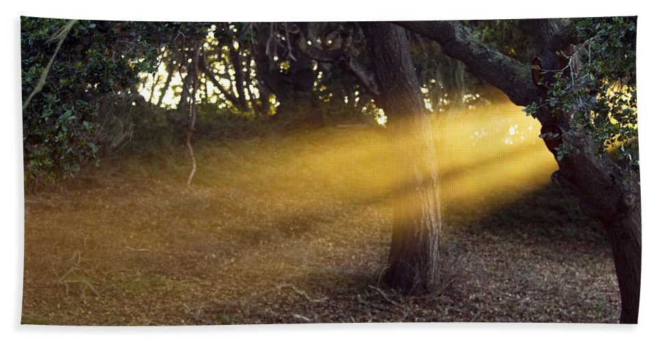 Landscape Hand Towel featuring the photograph Sun Rays 2 by Jill Reger