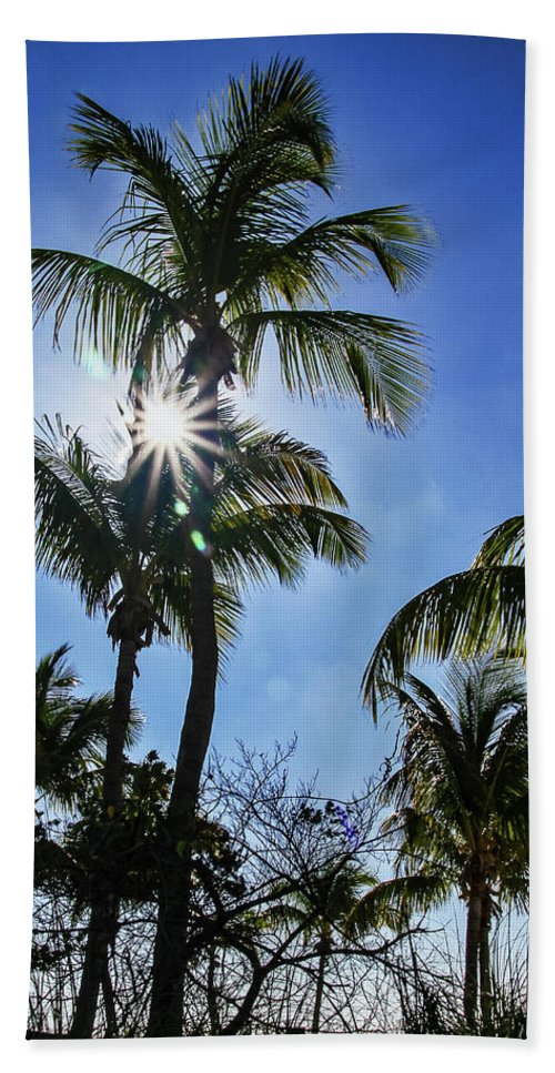 Sky Hand Towel featuring the photograph Sun Through Smathers Beach Palms by Bob Slitzan