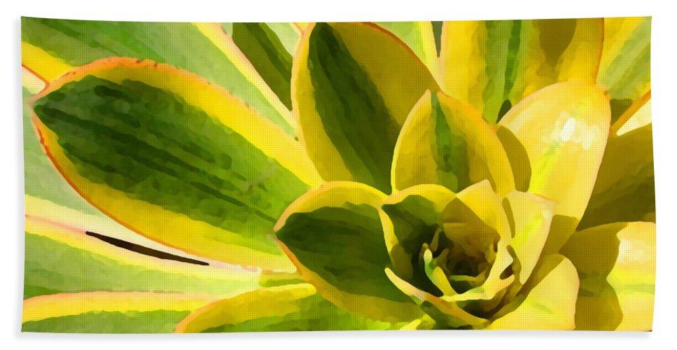 Landscape Bath Sheet featuring the photograph Sunburst Succulent Close-up 2 by Amy Vangsgard
