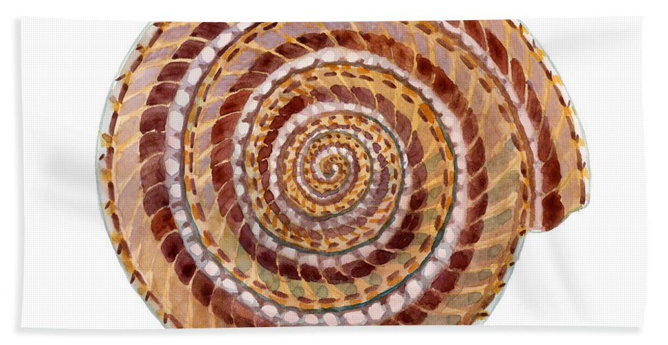Shell Bath Sheet featuring the painting Sundial Shell by Amy Kirkpatrick