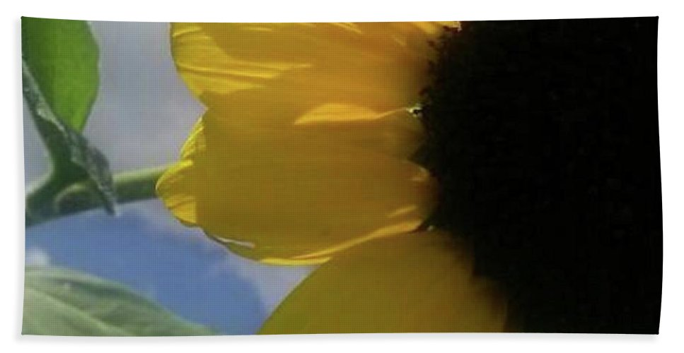 Flowers Hand Towel featuring the photograph Sunflower by Beverly Elliott