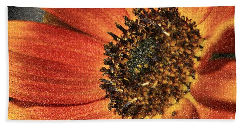 Flower Hand Towel featuring the photograph Sunflower Dance by Deborah Benoit