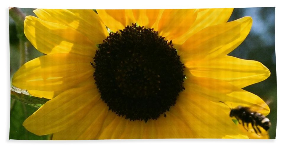 Flower Bath Towel featuring the photograph Sunflower With Bee by Dean Triolo