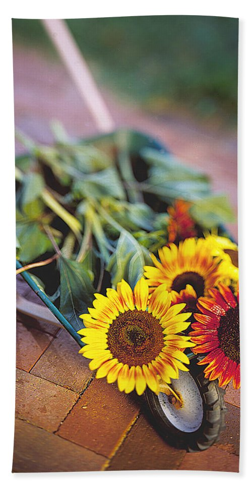 Sunflower Hand Towel featuring the photograph Sunflowers by Robert Ponzoni