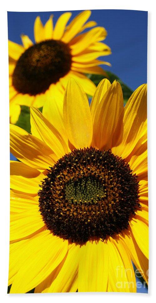 Sunflowers Bath Sheet featuring the photograph Sunflowers by Gaspar Avila