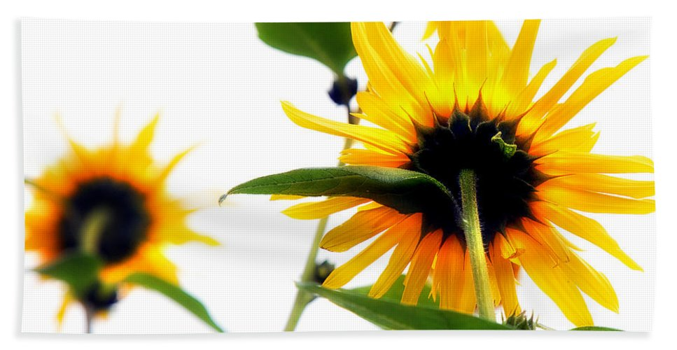Sunflowers Bath Towel featuring the photograph Sunflowers by Mal Bray