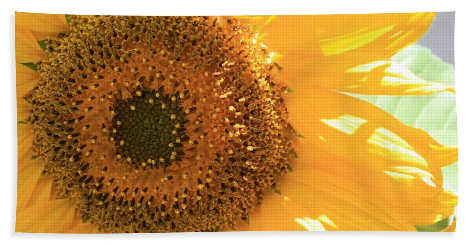 Sunflower Hand Towel featuring the photograph Sunflowers by Marna Edwards Flavell
