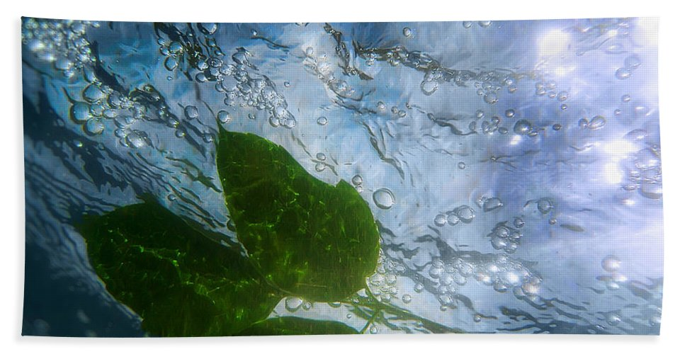 Sun Hand Towel featuring the photograph Sunleaf No.2 by Tammy Wetzel