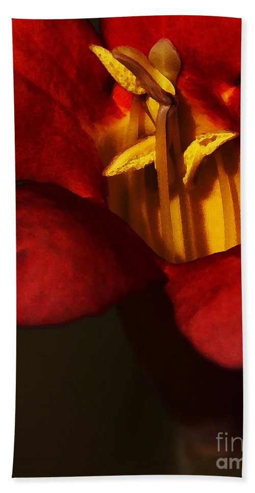 Flower Bath Towel featuring the photograph Sunlit Attraction by Linda Shafer