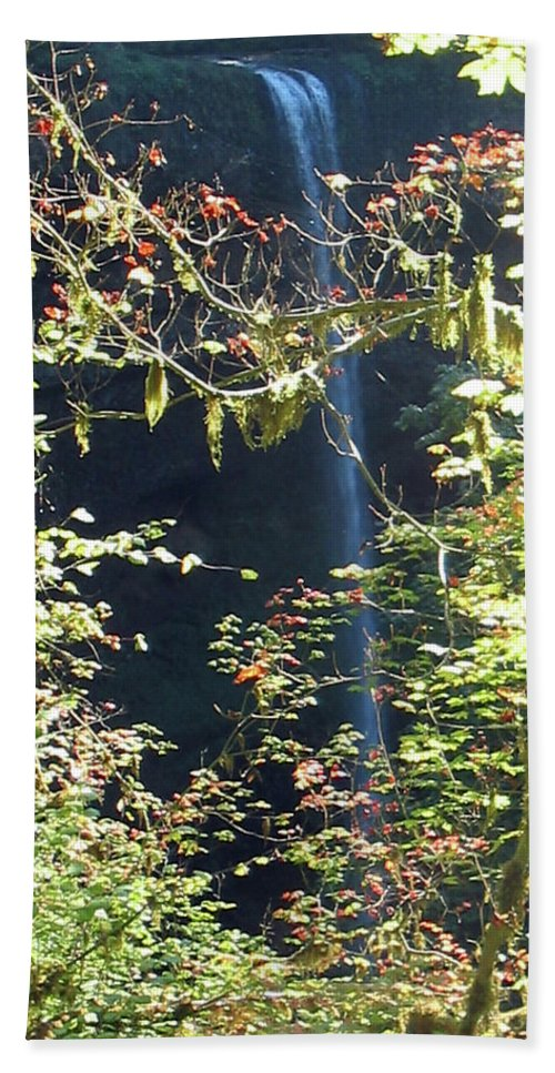 Landscape Bath Sheet featuring the photograph Sunlite Silver Falls by Thomas J Herring