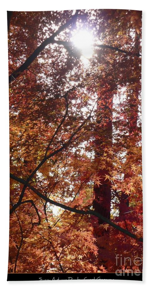 Fall Hand Towel featuring the photograph Sunny Autumn Day Poster by Carol Groenen
