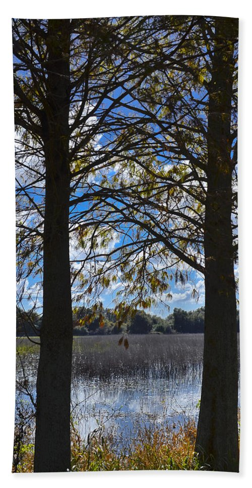 Florida Landscape Photography Bath Sheet featuring the photograph Sunny Day On The Pond by Carolyn Marshall