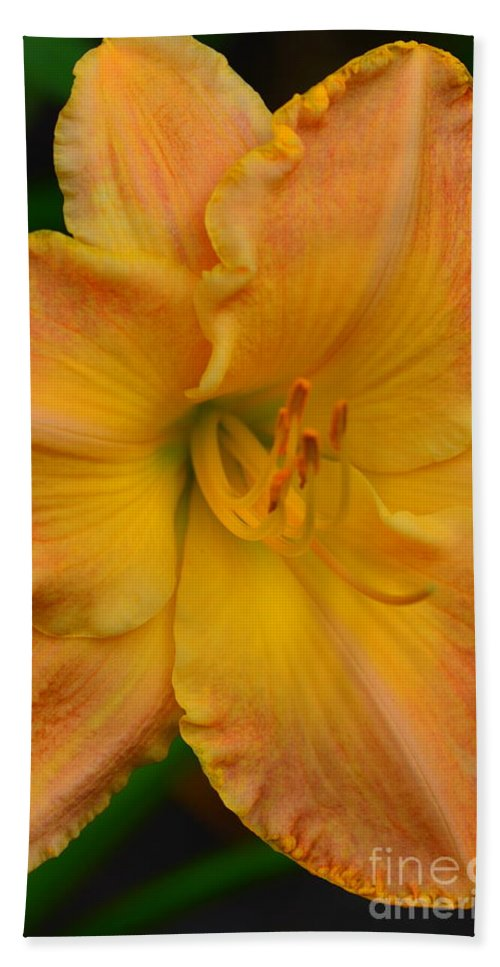 #day # Flora #lily Bath Sheet featuring the photograph Sunny by Kathleen Struckle