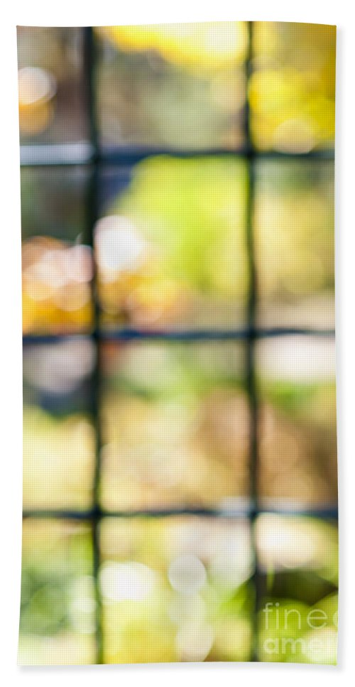 Window Bath Towel featuring the photograph Sunny Outside by Elena Elisseeva