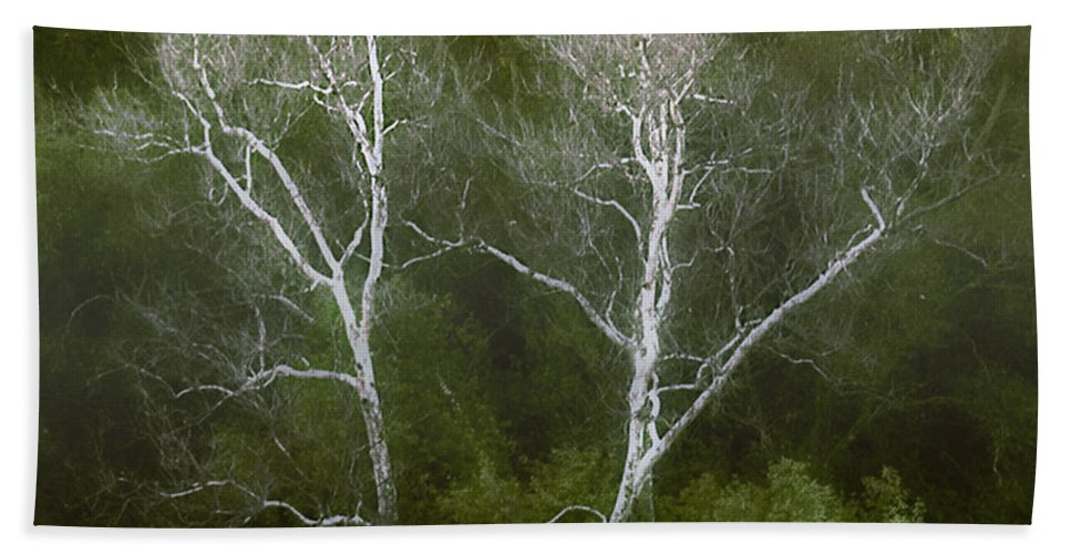 Landscape Bath Sheet featuring the photograph Sunol - Twins by Karen W Meyer