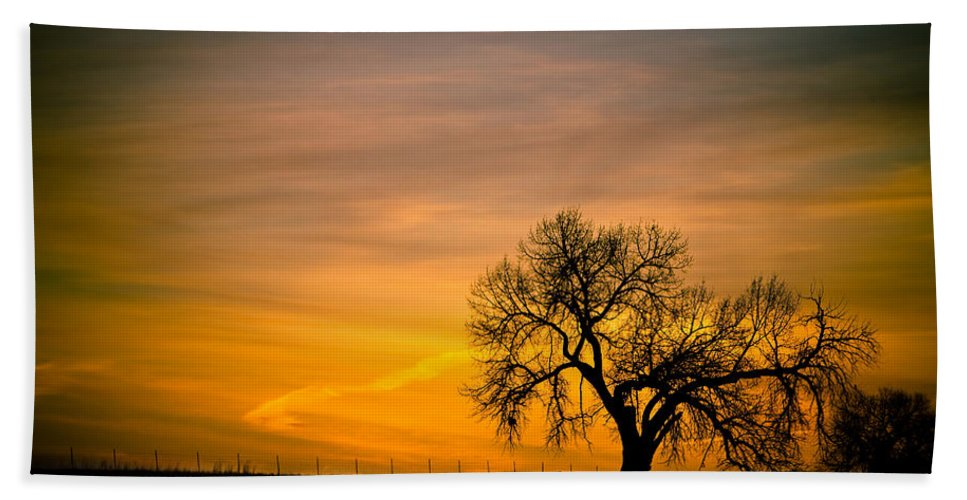 canvas Print Hand Towel featuring the photograph Sunrise 1-27-2011 by James BO Insogna