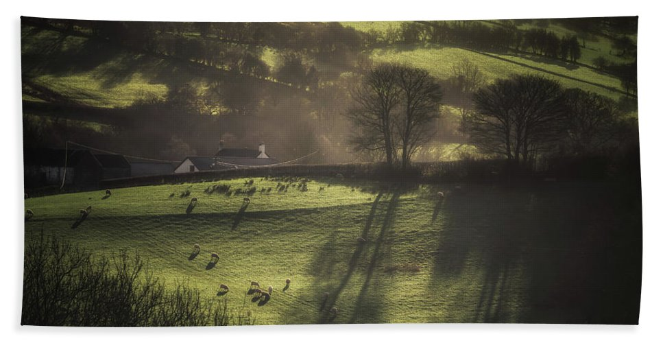 Agriculture Hand Towel featuring the photograph Sunrise At The Sheep Farm by Chris Fletcher