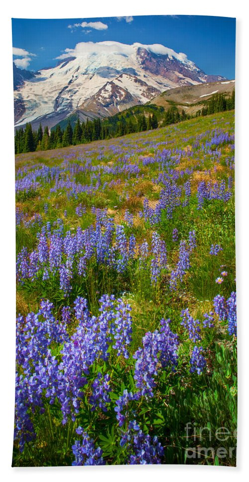 America Bath Sheet featuring the photograph Sunrise Meadow by Inge Johnsson