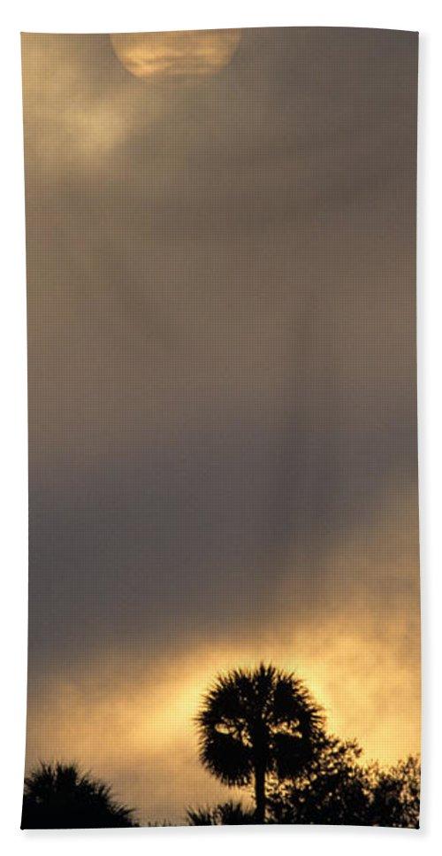 Sun Hand Towel featuring the photograph Sunrise On The Crystal River by John Harmon