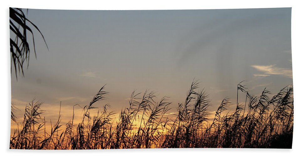 Sun Hand Towel featuring the photograph Sunset And Palm Grass by Laura Martin