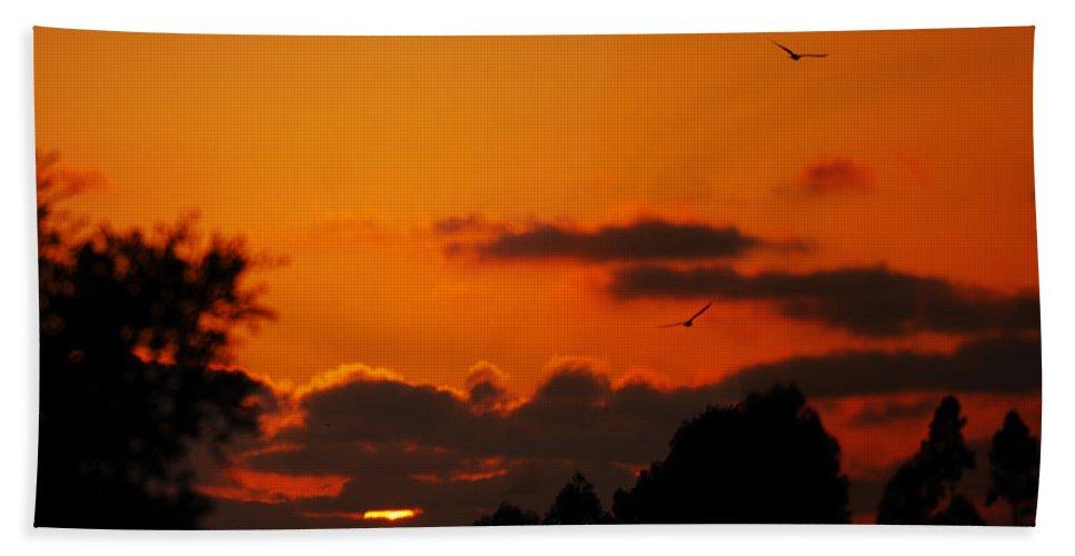 Sunset Hand Towel featuring the photograph Sunset Birds by Jill Reger