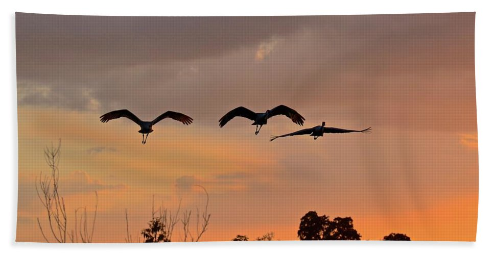 Flight Bath Sheet featuring the photograph Sunset Fly Over by Carol Bradley