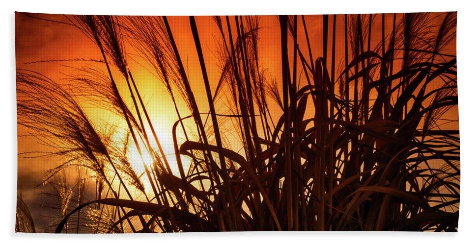 Landscape Bath Sheet featuring the photograph Sunset Grass by Jim Love