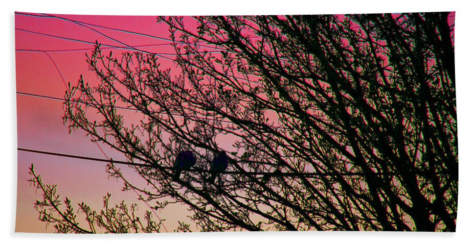 Tree Hand Towel featuring the photograph Sunset Lovers by Alex Art and Photo