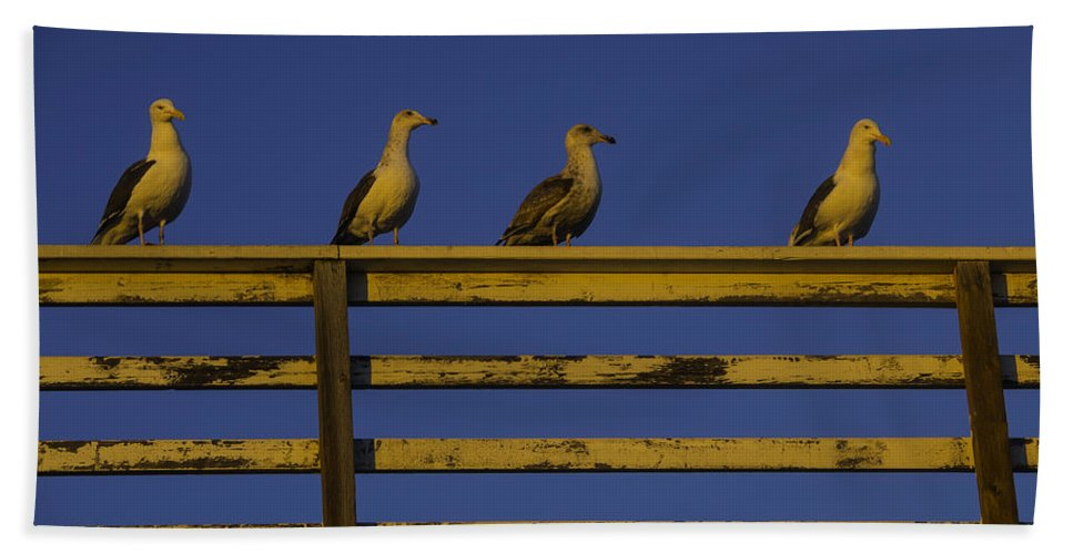 Sunset Hand Towel featuring the photograph Sunset Seagulls by Garry Gay