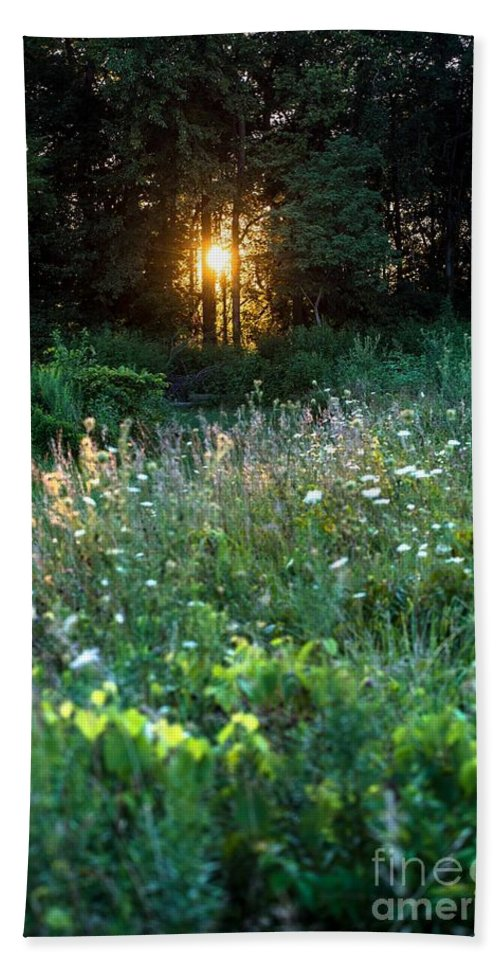 Sunset Bath Sheet featuring the photograph Sunset Through The Trees by Wesley Farnsworth