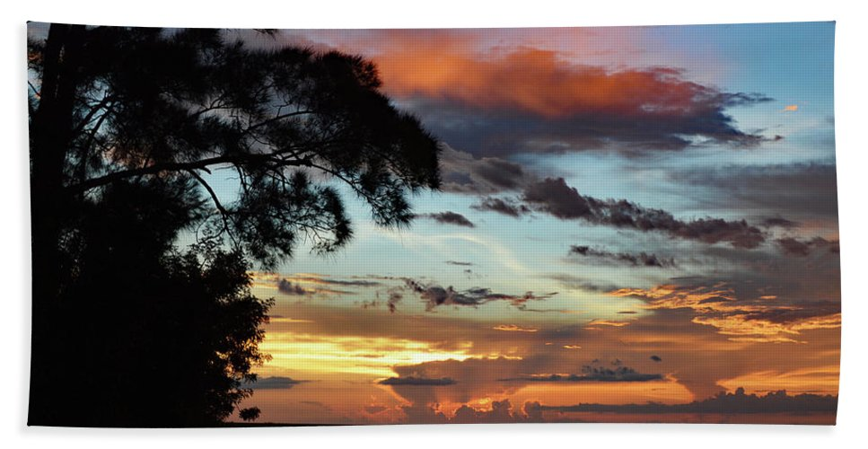 Delray Bath Sheet featuring the photograph Sunset Tree Florida by Ken Figurski