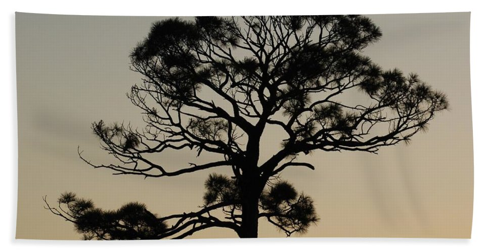 Tree Hand Towel featuring the photograph Sunset Tree by Rob Hans