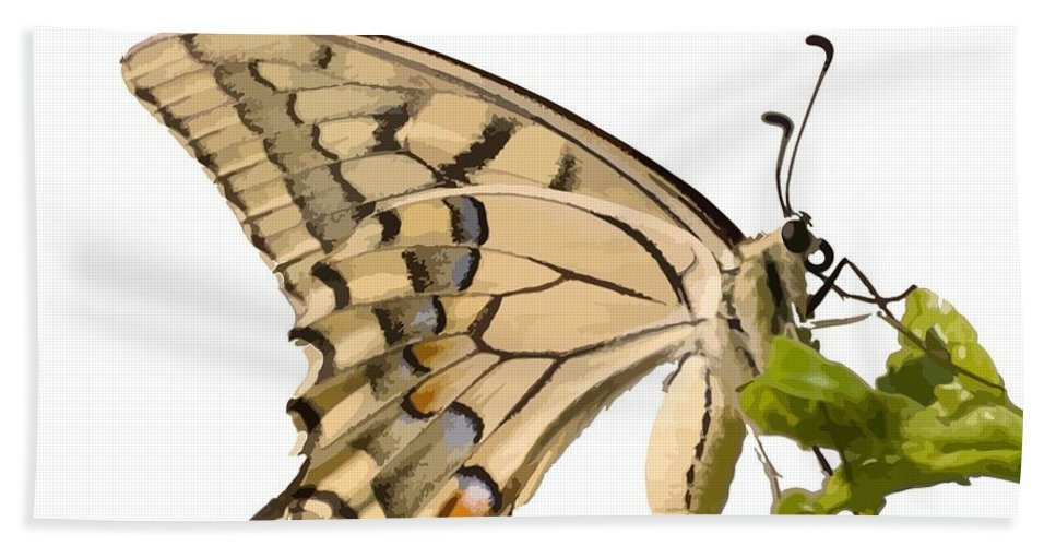 Butterfly Hand Towel featuring the photograph Swallowtail Butterfly Vector Isolated by Taiche Acrylic Art