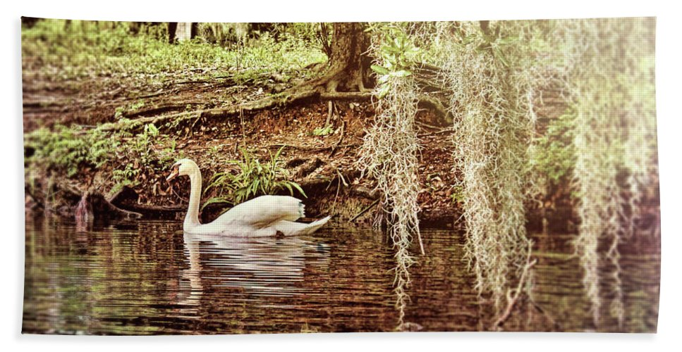 Swan Bath Sheet featuring the photograph Swan Dreams by Judy Vincent
