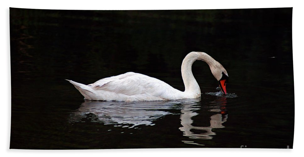 Clay Hand Towel featuring the photograph Swan Drinking by Clayton Bruster